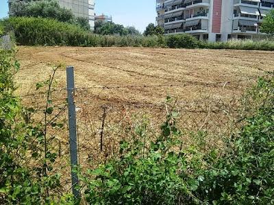 Αποτέλεσμα εικόνας για agriniolike καθάρισαν τα οικόπεδα