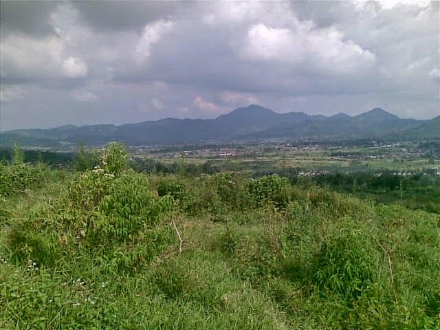 Foto(5385) Di Jual Tanah Murah 96 Ha Lokasi Kawasan Puncak Jual tanah di cipanas jual tanah di puncak