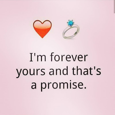 promise me this is forever quotes
