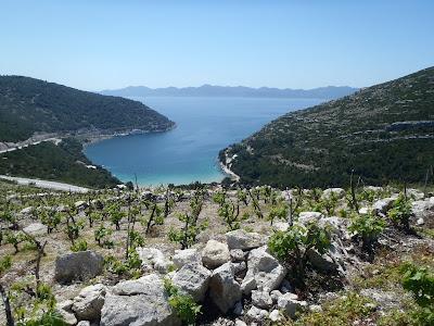 cantine croazia
