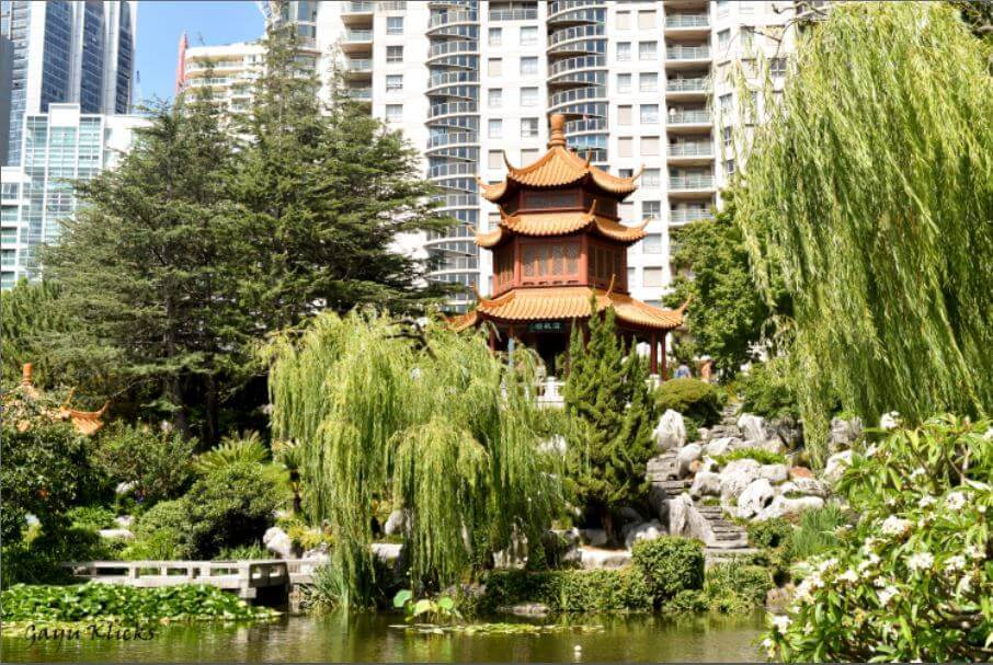 Have you visited Chinese Garden of Friendship at Pyrmont Bay, Sydney ...