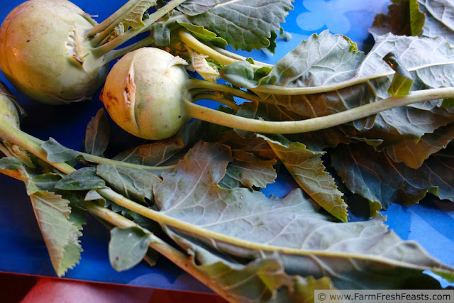 http://www.farmfreshfeasts.com/2013/01/kohlrabi-greens-manchego-potato-and.html