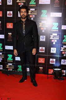 Bollywood Celebrities on the Red Carpet Of Zee Cine Awards 2017 Exclusive 076.JPG