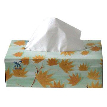 http://2.bp.blogspot.com/-VWaJ38m7RNg/TfMUz9556UI/AAAAAAAAAXA/6JmW00pvqyM/s1600/tissue1.jpg