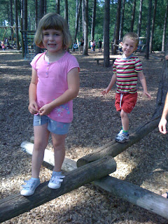 balancing beam - log obstacle in hundred acre wood