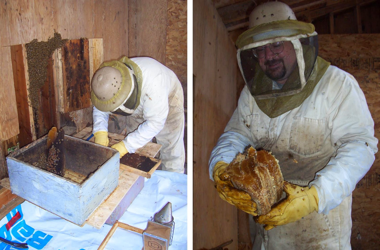 Beekeeping Remove  Comb To Make Room