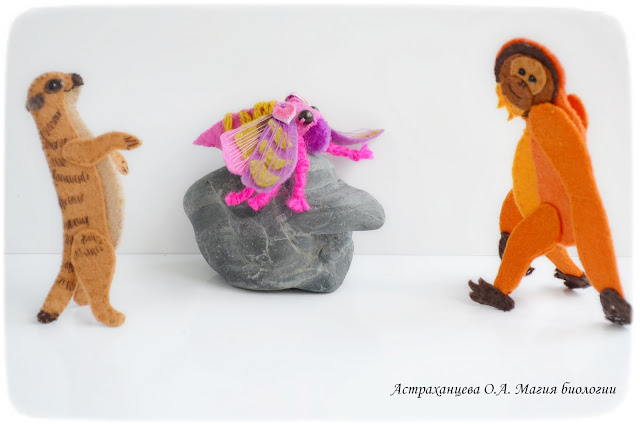 palchikovyj-teatr-igrushki-iz-fetra-brazhnik-vinnyj-surikat-orangutan