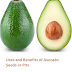 Uses and Benefits of Avocado (Butter Fruit) Seeds or Pits