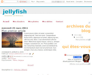 Jellyfish Theme