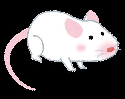白いマウス・ハツカネズミのイラスト