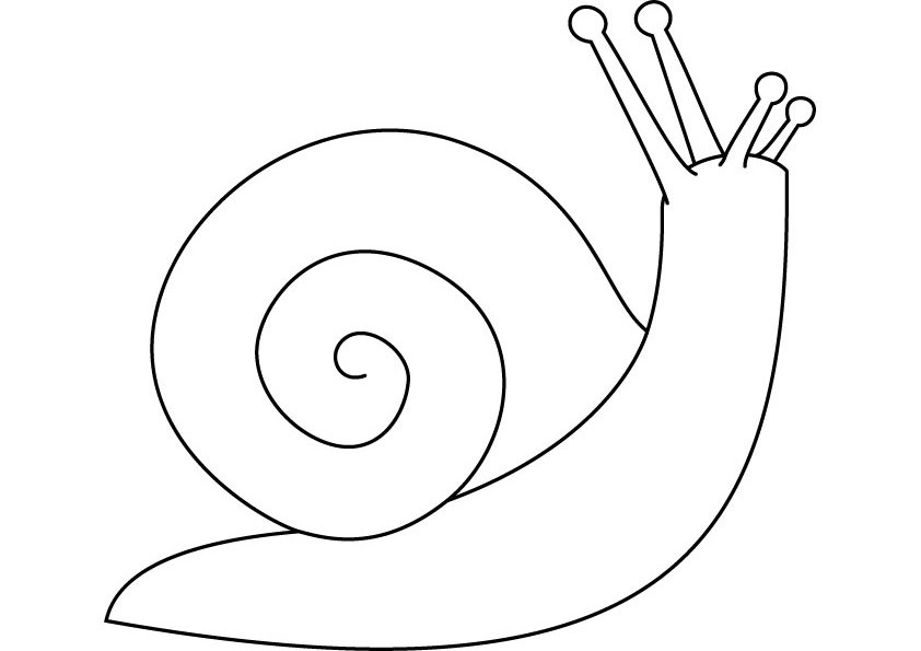 Snails - Free Colouring Pages
