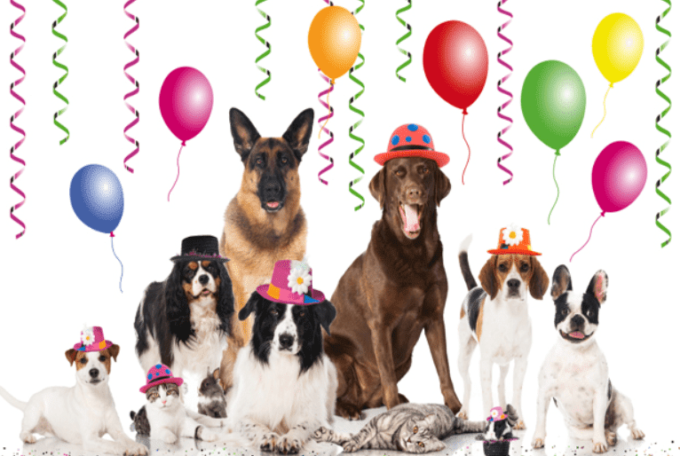Happy Dog's Day 2018 images