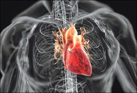 Produk Shaklee membantu kesihatan jantung