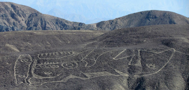 2,000 year old killer whale geoglyph found in Peru desert