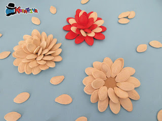 uso alternativo dei semi di zucca