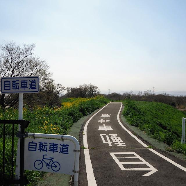 比企自転車道(川島こども動物自然公園自転車道)