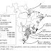 O Brasil e o Comércio Exterior - Gabarito