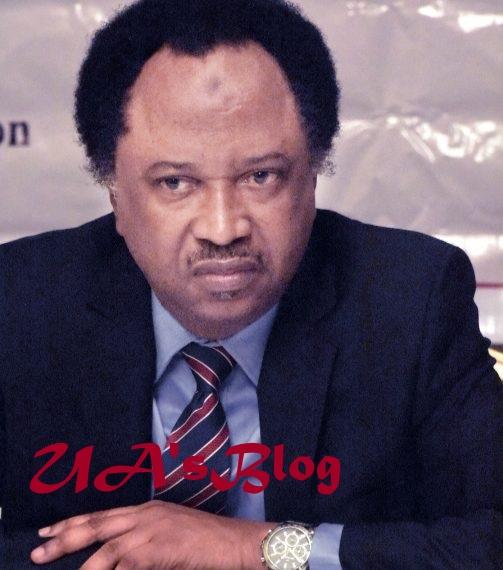 Shehu Sani mocks Buhari's 'Next Level' policy, hits El-Rufai