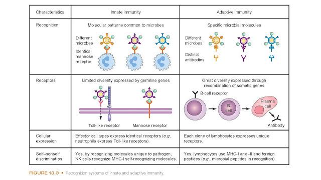 Pathogen Recognition