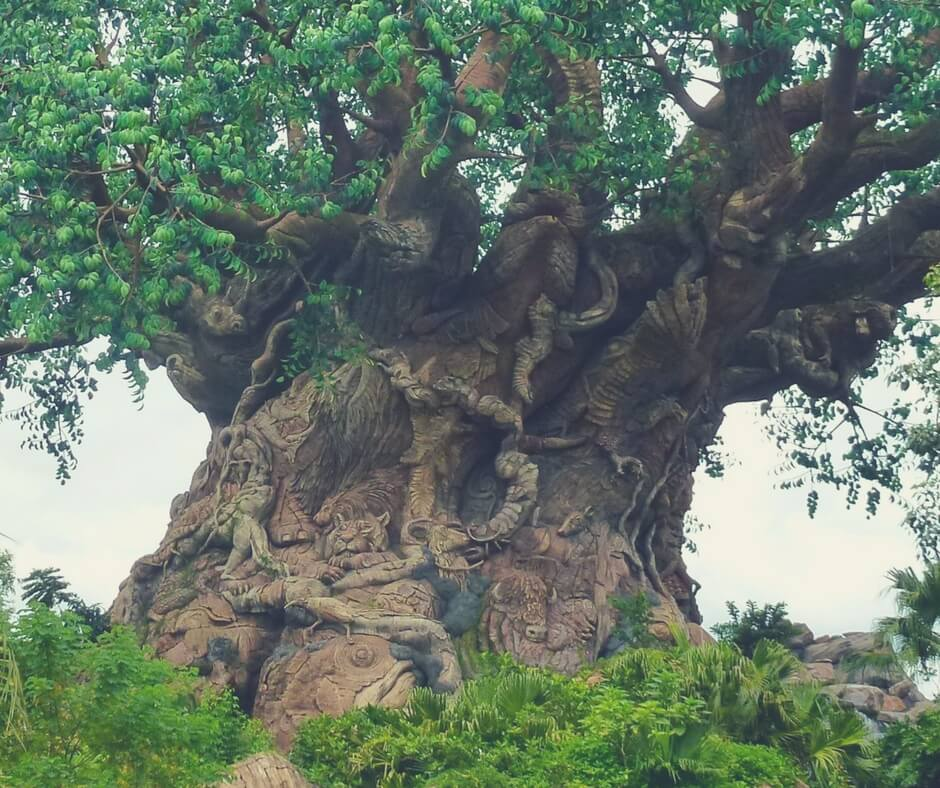 A close up of the carvings in the Tree of Life at Animal Kingdom, Walt Disney World.