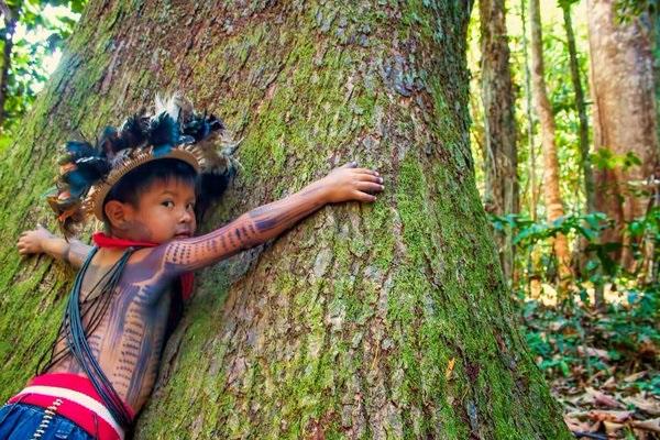 Autossustentável: Índio abraçando árvore