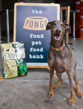 The Pongo Fund Pet Food Bank
