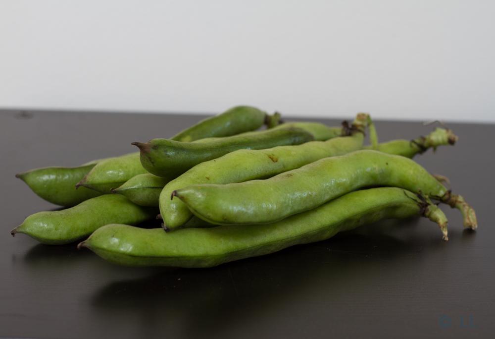 Kardemomme frøen : Knuste hestebønner og kartoffelsalat med røgeost