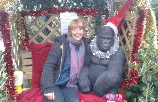 Granny and the gorilla