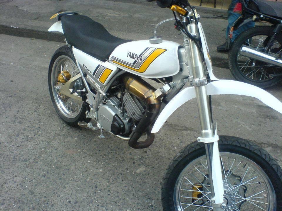Suzuki Ha C