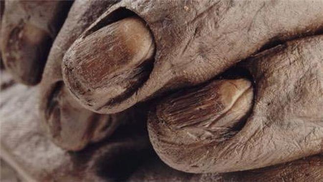 Στη φωτογραφία βλέπουμε τα περιποιημένα και καλοδιατηρημένα νύχια