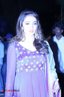 Nanna Nenu Na Boyfriends Telugu Movie Audio Launch Stills  0073.jpg