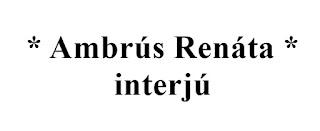 Interjú Ambrús Renátával, az Acélszentek borítótervezőjével