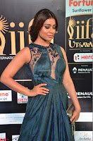 Shriya Saran in Beautiful Transparent Dark Gown IIFA Utsavam Awards 2017 061.JPG