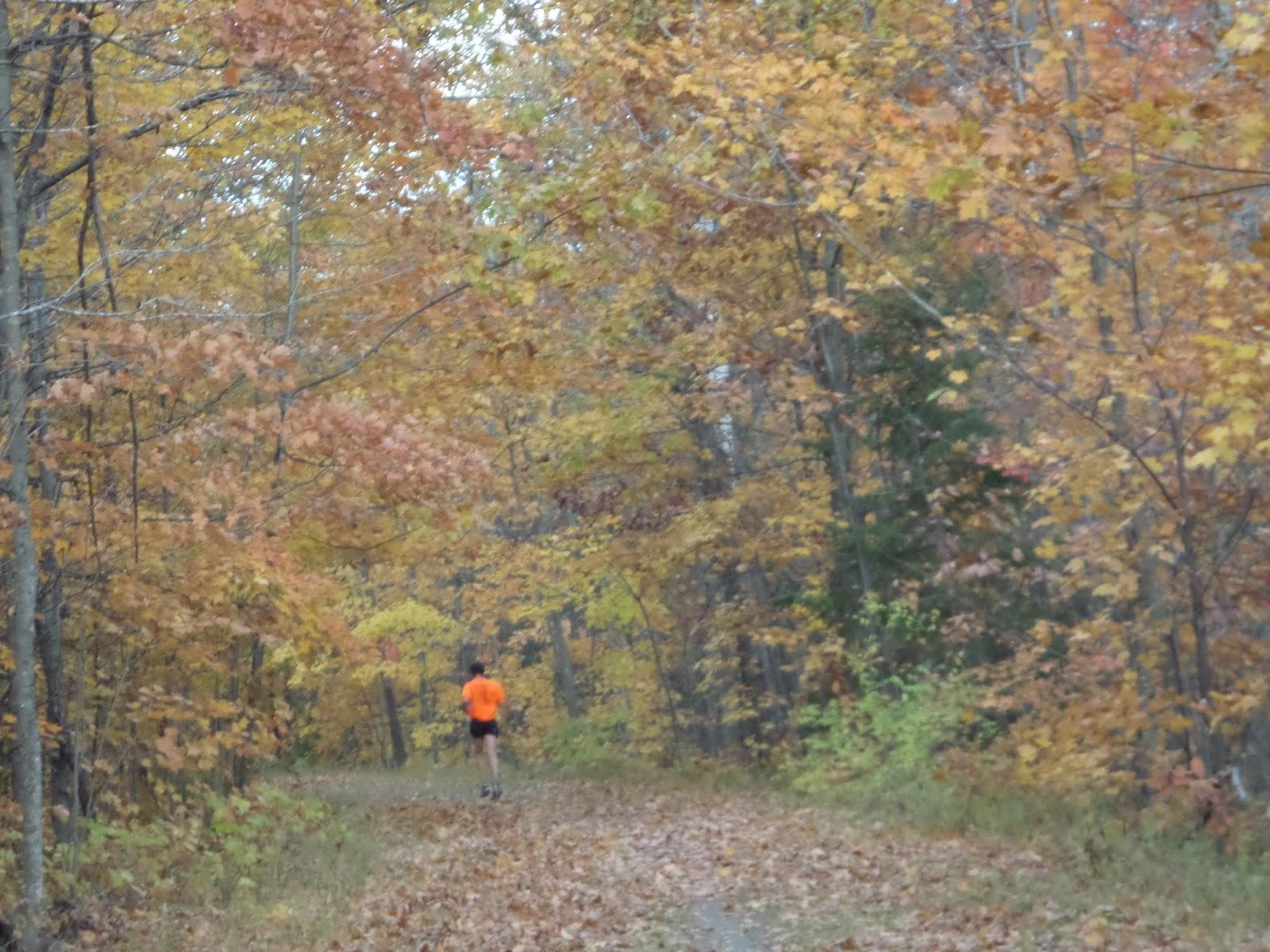 Opowiesci Z Zycia Barwy Jesieni Barwy Zycia