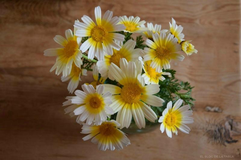 flores silvestres, margarita silvestre, Glebionis coronaria