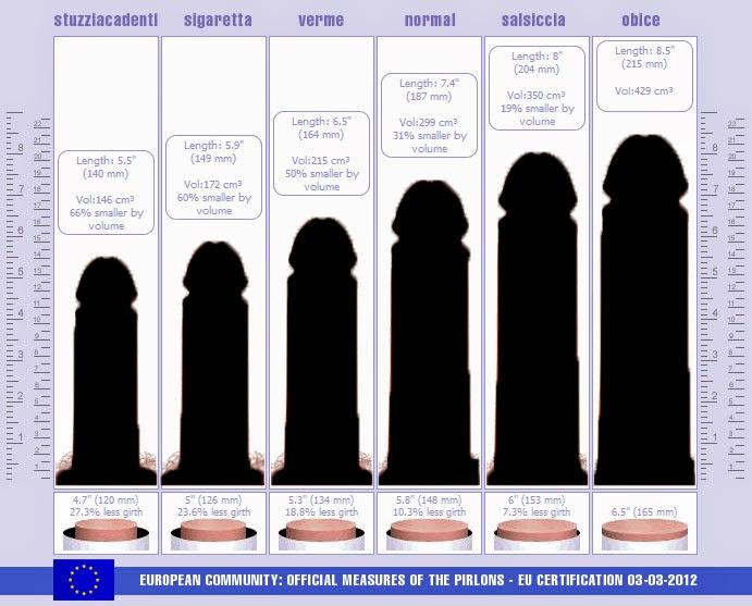 dimensione media del pene sdraiato