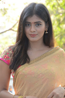 Actress Heba Patel Stills in Half Saree at Nenu Naa Boyfriends Movie Opening  0136