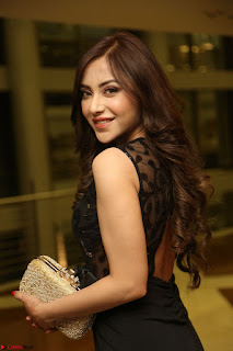 Angela Krislinzki in Transparent Black Gown at Rogue Movie Teaser Launch 1st March 2017 083.JPG