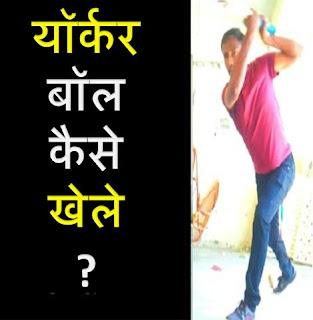 यॉर्कर बॉल कैसे खेले | How To Play Yorker Ball In Hindi