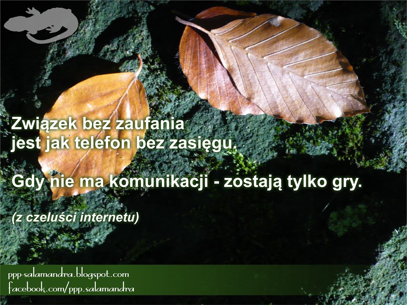 dobry psycholog w Warszawie
