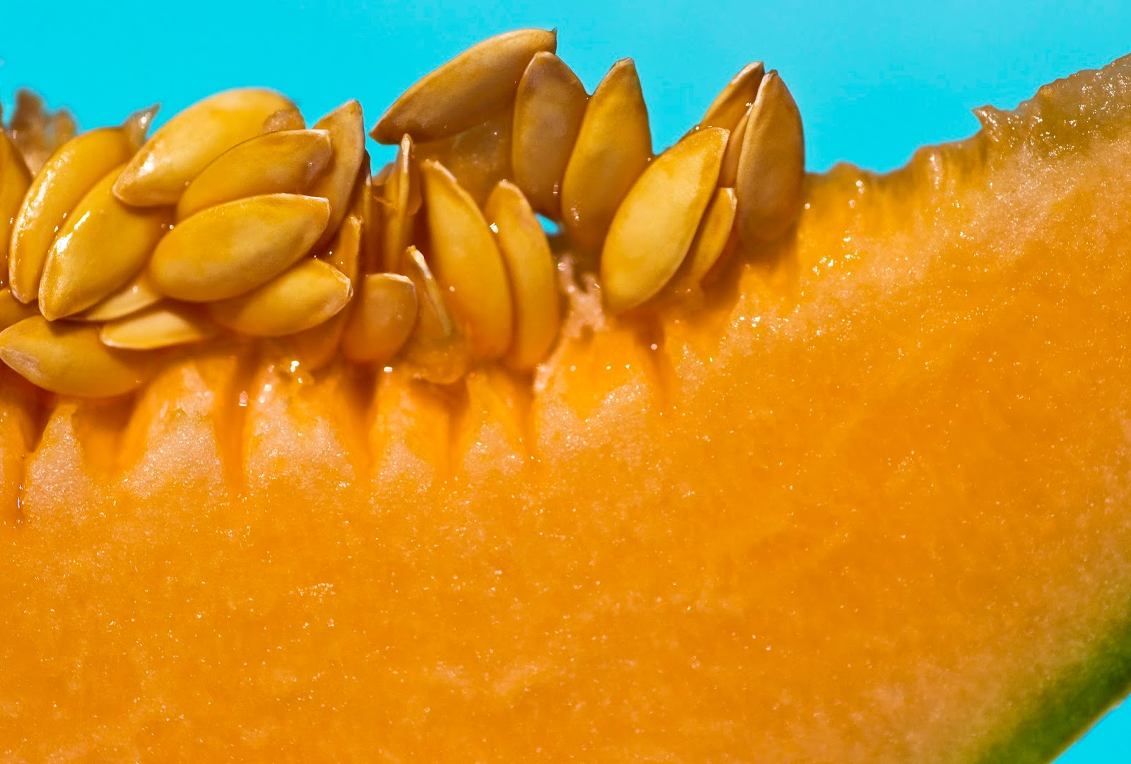 Muskmelon seeds, from cantaloupe which contains beta carotene, or vitamin A, which is believed to regulate the growth of skin cells on your scalp and sebum in the skin's outer layer, Dr. Zeichner says.