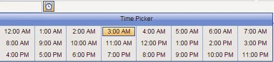 Rad Date Time Picker Change the column size