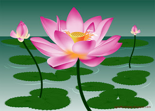 Beautiful Lotus Flower Buds in the Pond Vector Design
