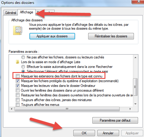 Masquer les extensions -windows
