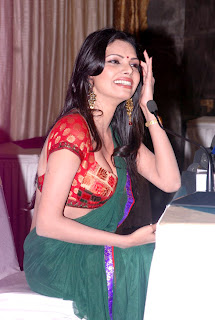 Sherlyn Chopra's Sizzling Photo Shoot in Saree press meet