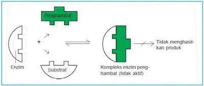 Inhibitor Kompetitif