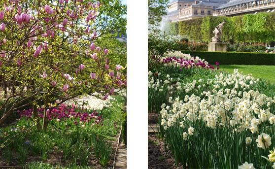 Forår i Byernes By. Park Jardin du Palais Royal