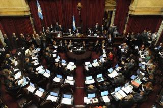 El CELS impugnó a Milani y el Senado postergó el debate hasta mañana