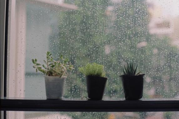 một chiều mưa nhớ anh