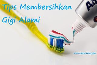 cara ampuh bersihkan gigi secara alami